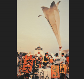 Wild Lily March Movement in 1990