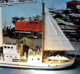 Model of powered fisheries