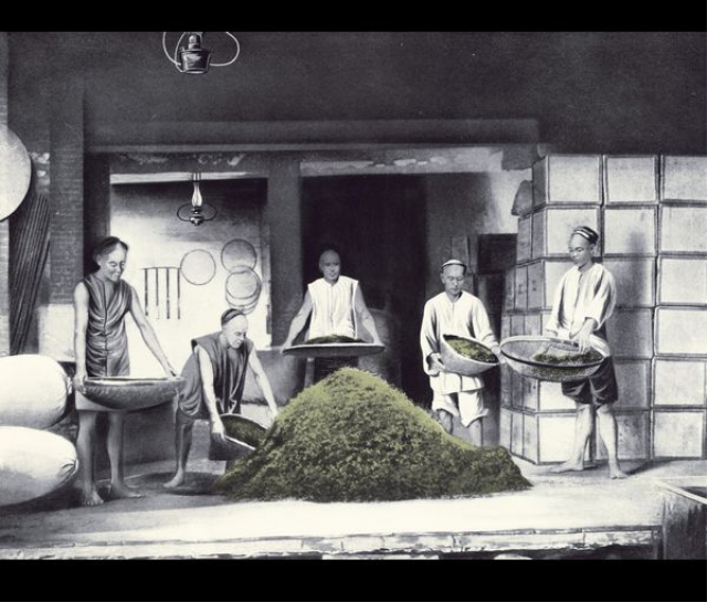 Tea roasting process – tea sifting